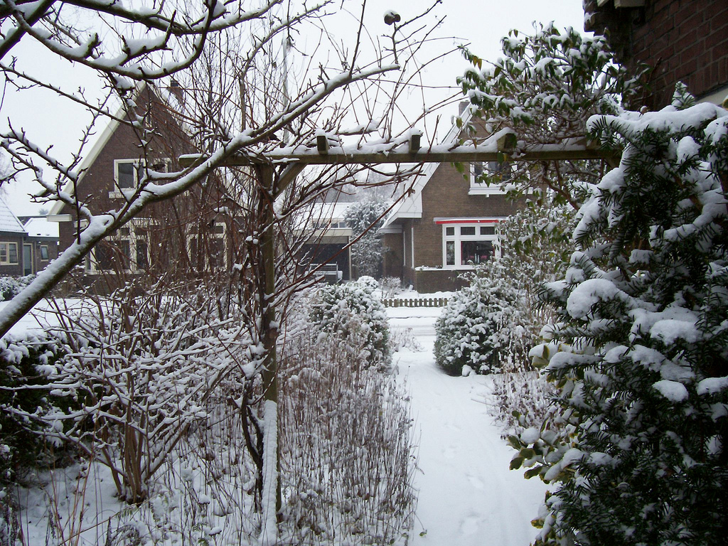 The street seen from the side of our house